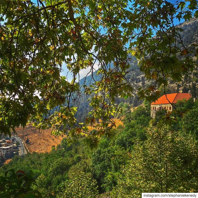 Ehden always beautiful , no matter what the weather or season 🌿🍁🍃🍂 🇱🇧